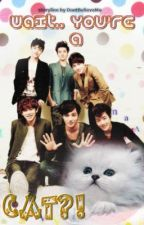 Wait.. You're a CAT?! [EXO fic] by DontBelieveMe