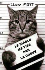 LE DIABLE ME TIRE PAR LA QUEUE by LiamFost