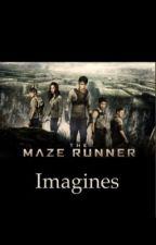 Maze runner imagines by ninabeyou