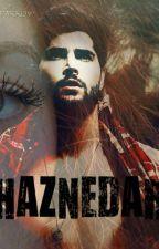 HAZNEDAR by Meltemin-Nergizin