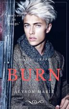 BURN (Book Two) by MissAmane