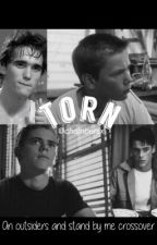 Torn - Outsiders/Stand By Me by chambersx