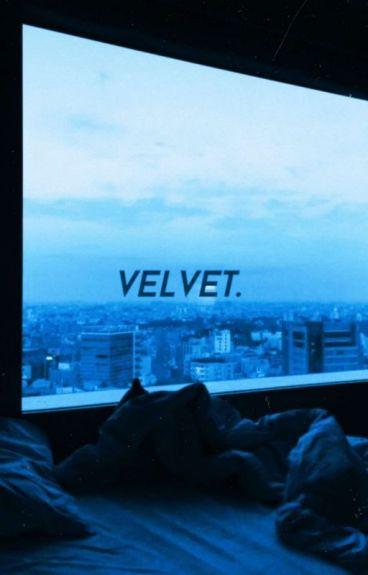 「 Velvet 」l.t.