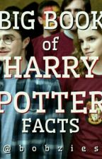 Big Book Of Harry Potter Facts by bobzies