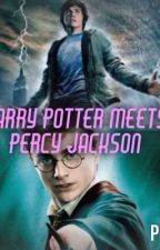 Percy Jackson meets Harry Potter by Amythestchildofhades