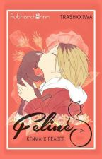 Feline (Kenma X Reader) by Citrarians