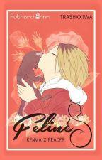 Feline (Kenma X Reader) by Citrarians