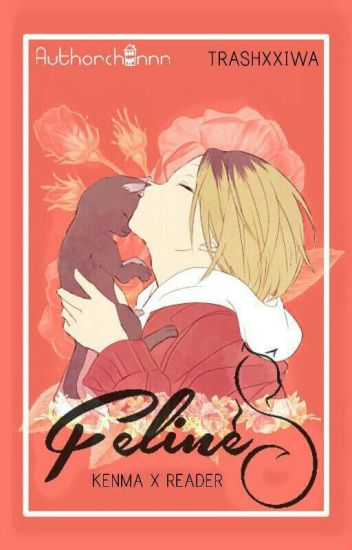 Feline (Kenma X Reader)