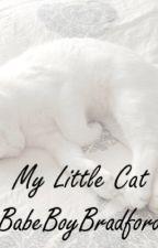 My Litte cat. || Ziam Mayne. Zaynkitten! by BabeBoYBradforD