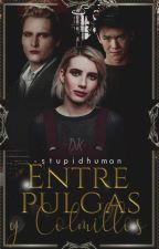 'Entre Pulgas y Colmillos - 송곳니와 벼룩' ; Seth Clearwater by -stupidhuman