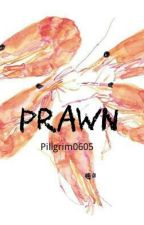 Prawn by Pillgrim0605