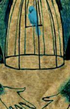 O Pássaro Azul - Charles Bukowski by Poetizisses