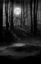 Spooky Woods by QueenOfDeathz