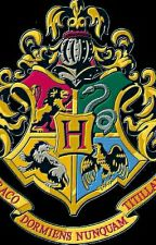 Harry Potter and The Heir Of Hogwarts by SonOfArtemis21