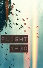 Flight 1-80 (One-Shot Story) by fluffymarshmallow