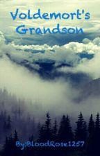 Voldemort's Grandson by BloodRose1257