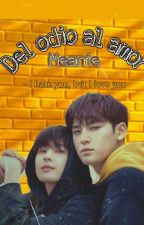 Del Odio Al Amor (Meanie Couple) by Paola_909