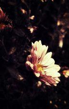 The Needful Love by shnookum_shnookum