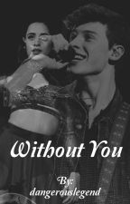 Without You ♡ Camila Cabello & Shawn Mendes by dangerouslegend