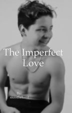 The Imperfect Love by sfeistheloml