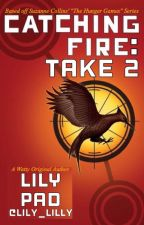 Catching Fire: Take 2  by lily_lilly