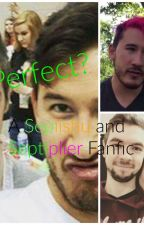 Perfect? (A Septiishu and Septiplier Fanfic) by jazzyd1099