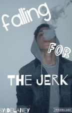 Falling For The Jerk by cheapfijiwater