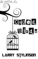 Caged Birds -A Larry Stylinson Story- by Britt1D4Life