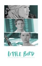 Little Bird ➸Finnick Odair{Book 1}✔️ by KatnissBajanCanadian