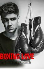Boxing Loves (Liam Payne Fan-Fiction) by ChattyManCouch