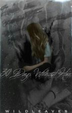 30 Days Without Him by wildleaves