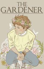 The Gardener • Larry Stylinson • (Mpreg! Louis) by onlyharryangel