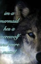 I'm a mermaid,he's a werewolf & were mated by Shortycanrock