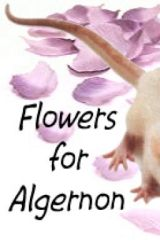 My Flowers for Algernon Project by kirachambers