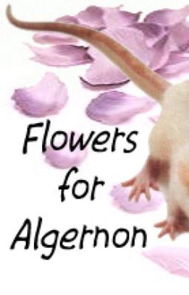 My Flowers for Algernon Project