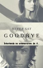 Never Say: Goodbye by GalaDesiree