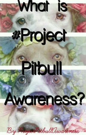 What Is Project Pitbull Awareness? by PitbullAwareness