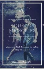 Aqueous Memories | INFINITE Fanfiction  by inspirit_k205