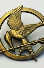 Hunger Games Mocking Jay Part 3 by hungergamesLover322