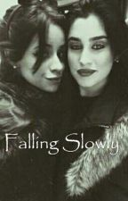 Falling Slowly (Camren) by allypeq