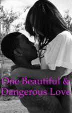 One Beautiful & Dangerous Love by tee245