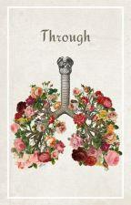 Through. by cacth22
