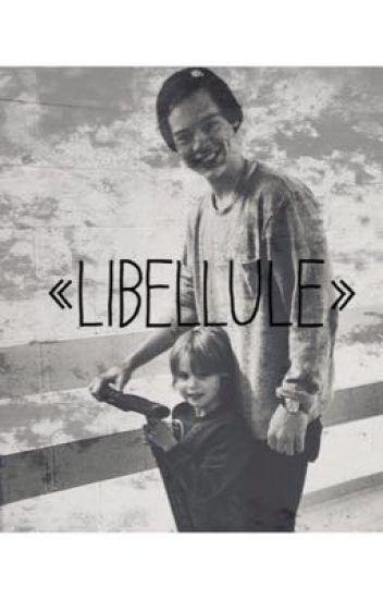 Libellule - NARRY ©