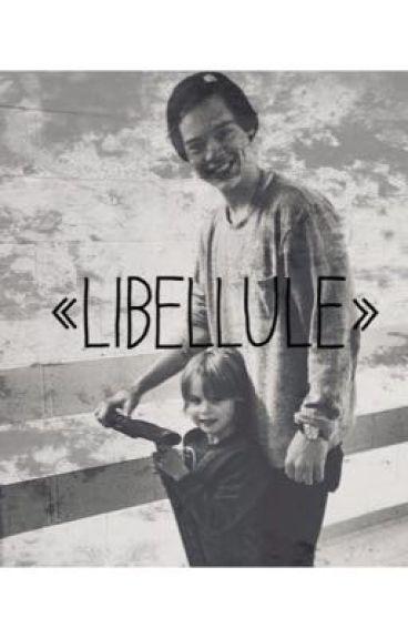 Libellule - NARRY