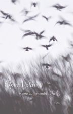 Opto Volare by MysticUniverse