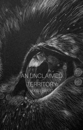 An Unclaimed Territory by NA_stories