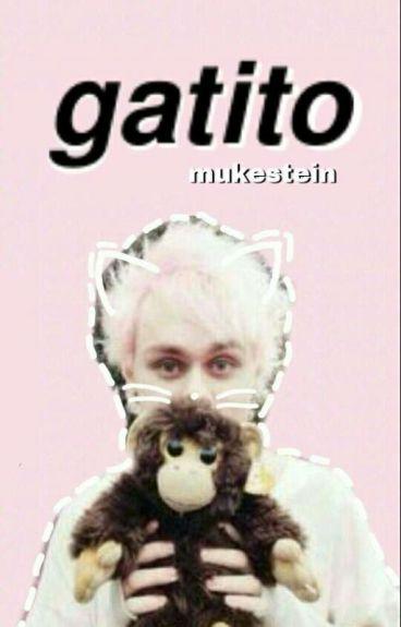 Gatito ❀ muke smut~