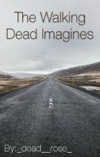 The Walking Dead Imagines by destielsbby