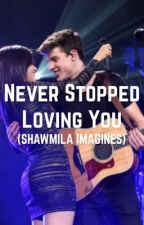 Never Stopped Loving You (Shawmila Imagines) by notsotypical1998