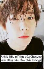 (ChanBaek_longfic) Vợ yêu, đừng trốn anh. by nghiemanhchanbaek